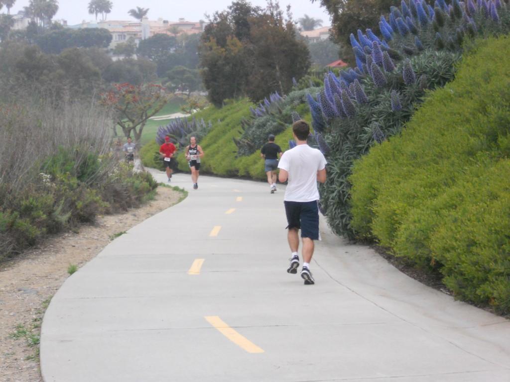 TMZ: Half-Marathon 2